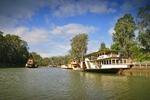 Pride of the Murray and Emmylou at Echuca, Victoria