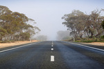 Foggy morning on the Sturt Highway, Victoria Mallee
