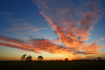 Mallee sunrise at Ouyen, Victoria