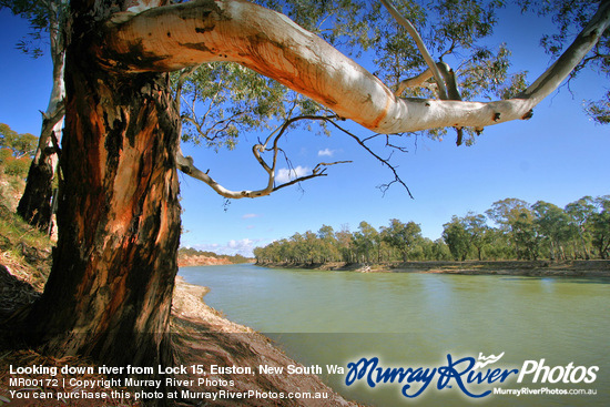 Looking down river from Lock 15, Euston, New South Wales