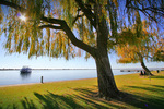 Paradise Queen on Lake Mulwala, Yarrawonga, Victoria