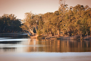 Murray River at Merbein