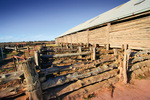 Mungo Woolshed, New South Wales