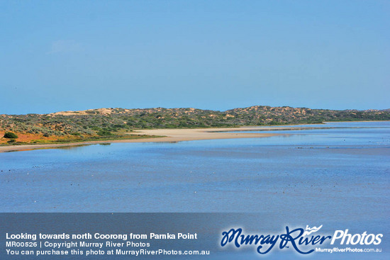 Looking towards north Coorong from Parnka Point