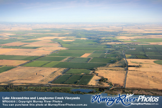 Lake Alexandrina and Langhorne Creek Vineyards