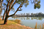 Riverfront at Loxton, South Australia