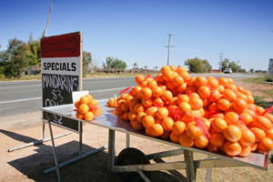Fruit stall near Merbein