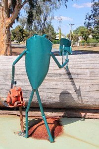 Southern Bell Frog sculpture
