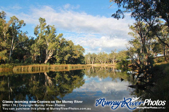 River Murray Reserves