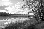 Paringa Bridge in black & white