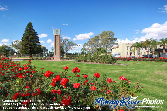 Clock and roses, Renmark