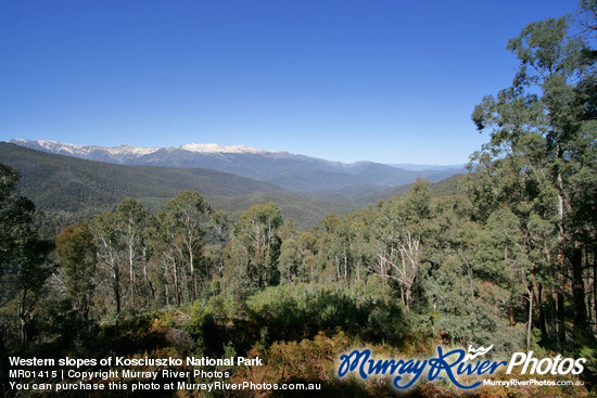 Western slopes of Kosciuszko National Park