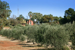 Carina Lodge Bed & Breakfast, Carina, Mallee, Victoria