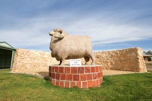 The Big Ram, Karoonda, South Australia