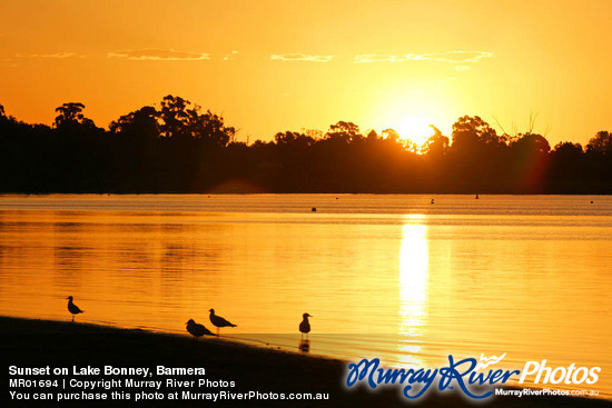 Sunset on Lake Bonney, Barmera