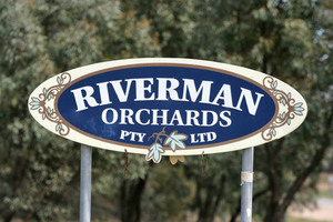 Riverman Orchards sign, Pingal, Victoria