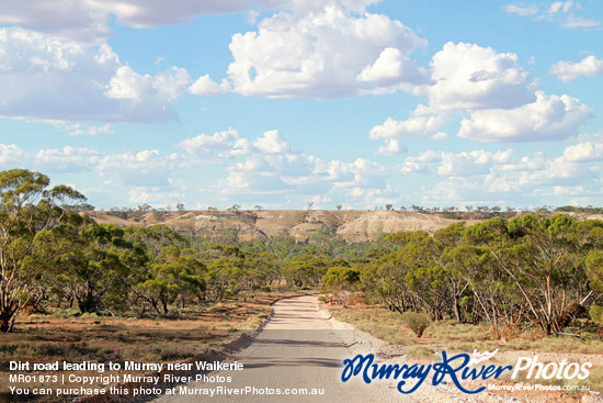 Dirt road leading to Murray near Waikerie