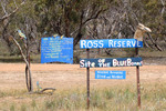 Ross Reserve, home of the Blue Bonnett, Carina