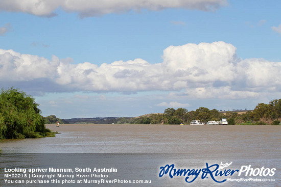 Looking upriver Mannum, South Australia