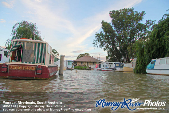 Mannum Riverboats, South Australia