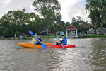 Kayaking around Mannum Canoe Trail