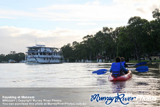 Kayaking at Mannum