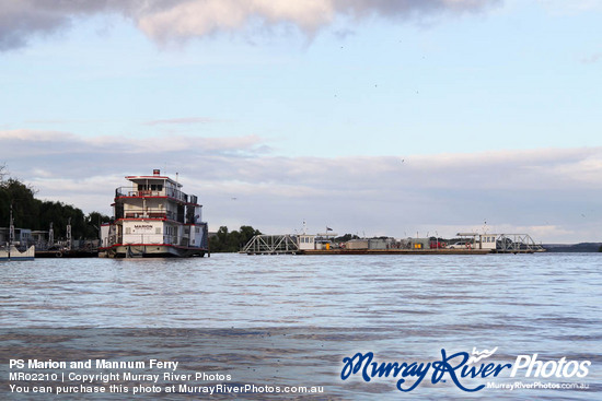 PS Marion and Mannum Ferry