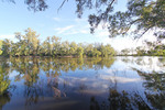 Murray River at Tooleybuc