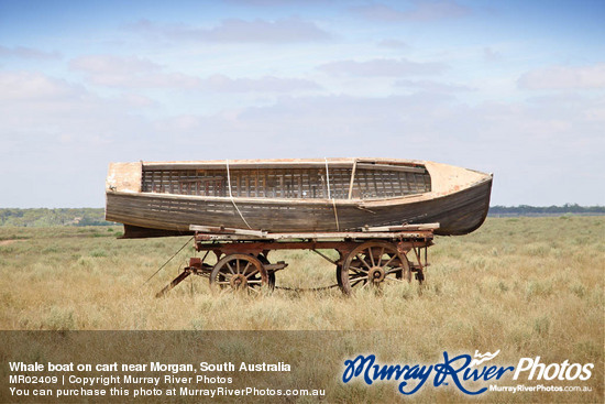 Whale boat on cart near Morgan, South Australia
