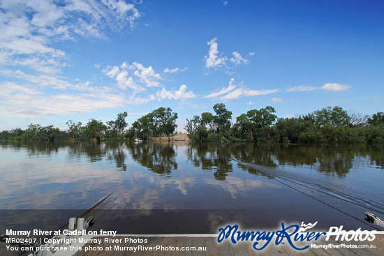 Murray River at Cadell on ferry