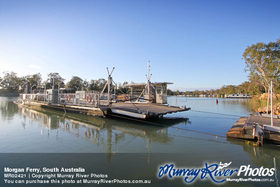 Morgan Ferry, South Australia