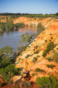 Murray River at Headings Cliffs, Riverland
