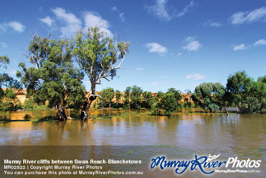 Murray River cliffs between Swan Reach-Blanchetown