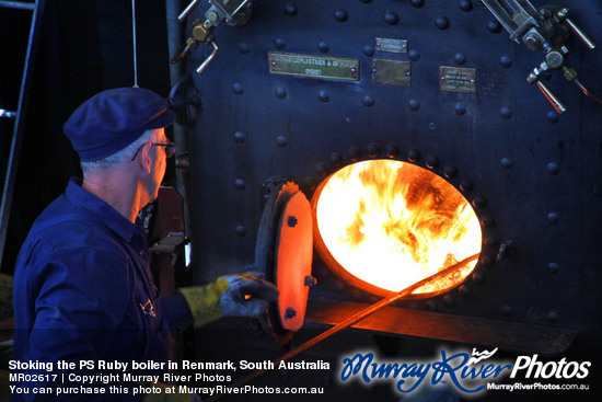 Stoking the PS Ruby boiler in Renmark, South Australia