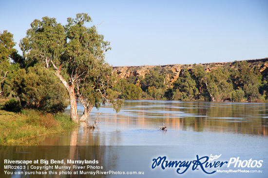 Riverscape at Big Bend, Murraylands