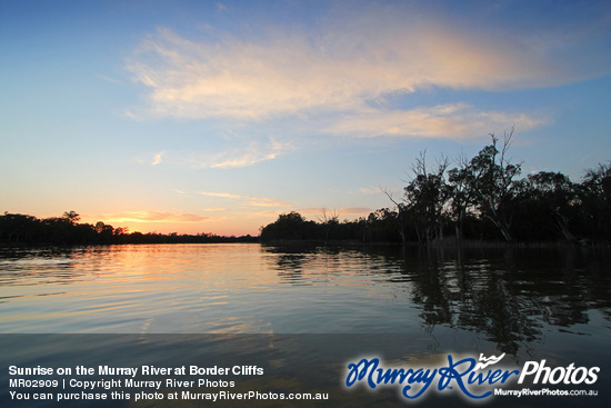 Sunrise on the Murray River at Border Cliffs