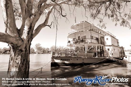 PS Marion black & white in Morgan, South Australia