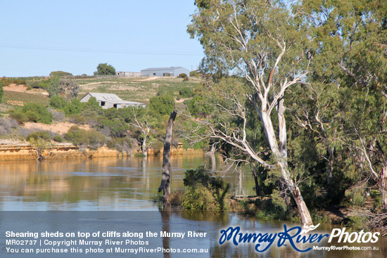 Shearing sheds on top of cliffs along the Murray River