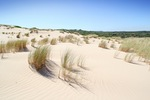 Sand dunes near 28 Mile Crossing, Coorong