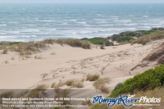 Sand dunes and Southern Ocean at 28 Mile Crossing, Coorong