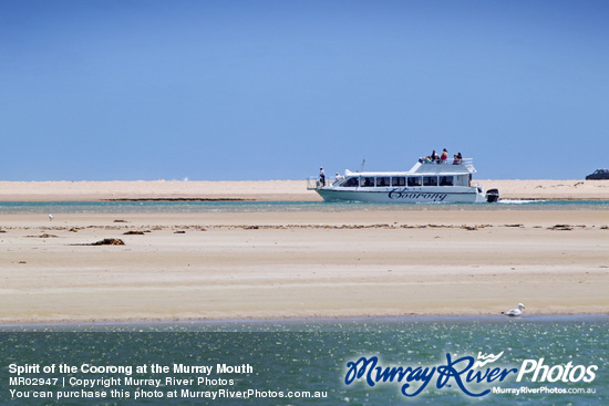 Spirit of the Coorong at the Murray Mouth