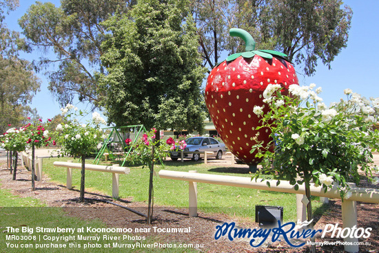 The Big Strawberry at Koonoomoo near Tocumwal