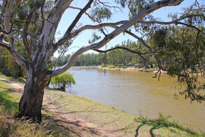 Riverside camping at Tocumwal