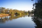 Murray River on sunrise at Tocumwal