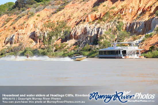 Houseboat and water skiiers at Headings Cliffs, Riverland