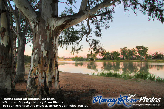 Holder Bend on sunrise, Waikerie