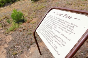 Lone Pine, Peake