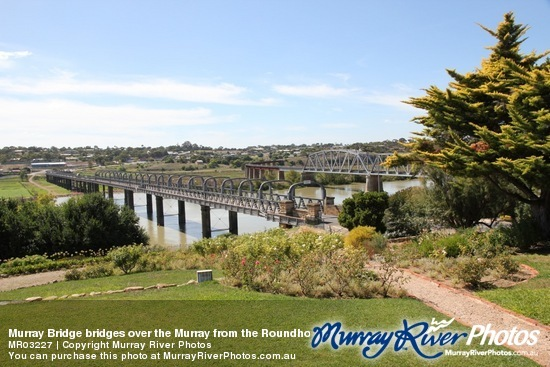 Murray Bridge bridges over the Murray from the Roundhouse