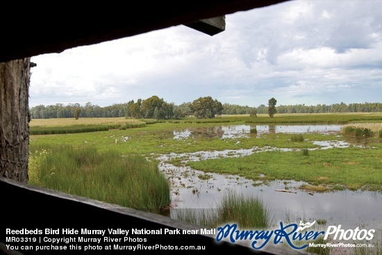 Murray Valley National and Regional Parks