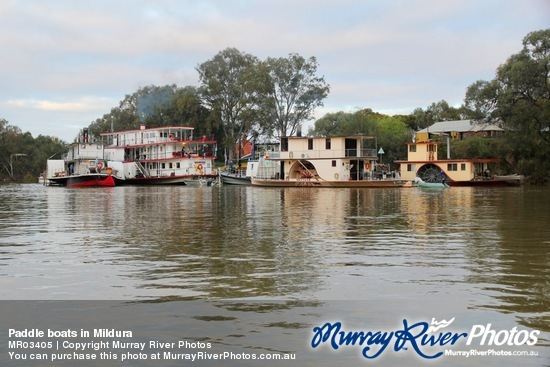 Paddle boats in Mildura